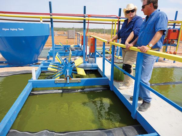 (Right) Paul Laur and site facility Manager Melinda Morgan take a look at El Dorado's demonstration algae raceways in Jal.