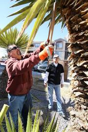 La Barge Landscape Inc. crew leader Ted Martinez, left, trims a yucca at the Allegro at Tanoan apartments as the company's president, Jack Lantry, supervises.