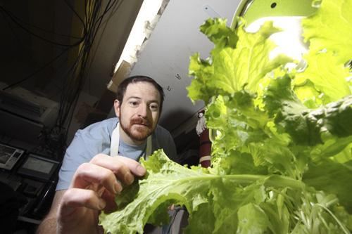 Chris Morales of Golden Crown Panaderia is growing produce in his office to limit the impact of rising prices.
