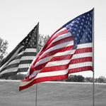 Veterans Day salute: A look at the challenges here at home