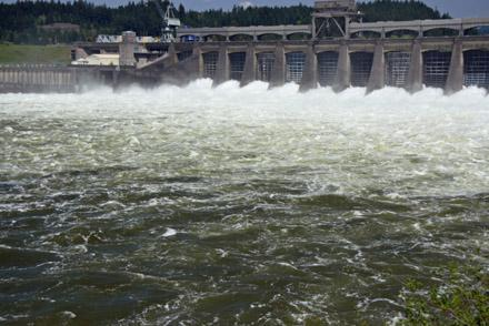 A decision by the Bonneville Power Administration could shut down Northwest wind farms as early as this week.
