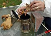 Like beekeepers have for centuries, Magista uses a smoker to calm the bees before checking the hive.