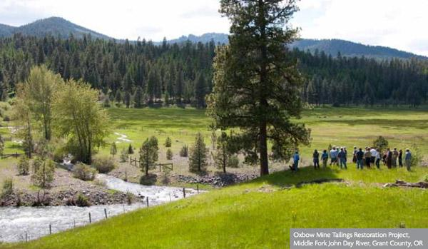A new Ecotrust report estimates that restoration projects such as this one in Grant County brought more than $977 million in economic activity to Oregon in the last decade. Click on the image to see more of the study's results.
