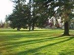 Portland getting greener