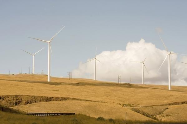 Wind farm developer Invenergy is seeking permission to build a big one in Morrow County.