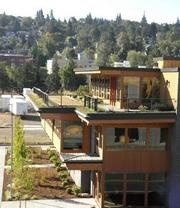 Turtle Island, maker of Tofurky among other meat alternatives, incorporated a green roof in its building design as part of its pursuit of LEED Platinum for the new facility.