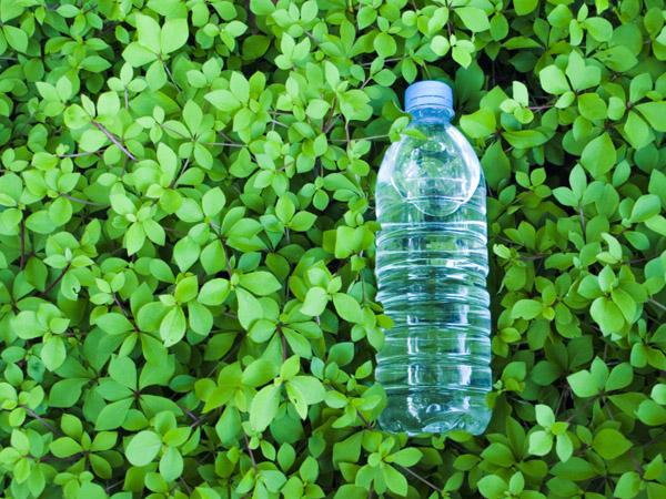 Five global companies will work together to develop plant-derived plastics.