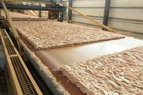 Georgia-Pacific will boost production at its oriented strand board (OSB) facility at Clarendon County, S.C., and add 100 jobs in the first quarter of 2013.