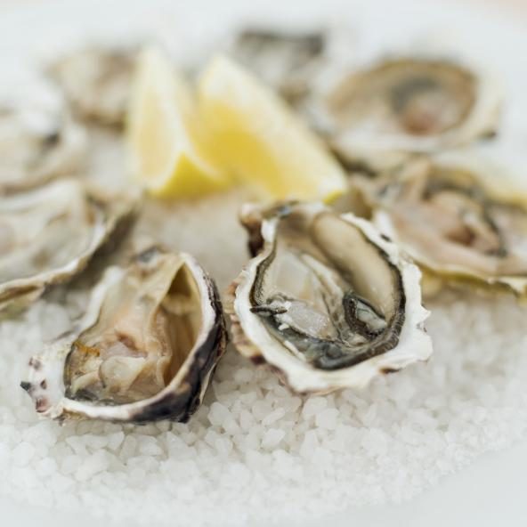 The inaugural Austin Oyster Festival will be held Nov. 9 at the Shoal Crossing Event Center in Northwest Austin, and will feature raw oysters, grilled oysters, fried oysters, oyster po'boys and oysters Rockefeller.