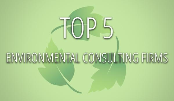 Austin S Top Environmental Consulting Firms