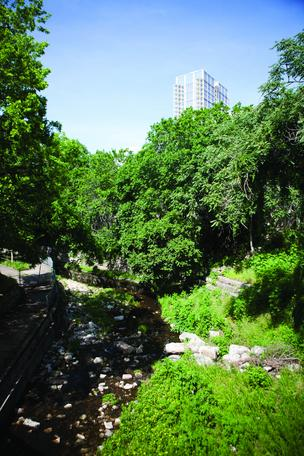 The final four teams have been announced for the Waller Creek design competition's third stage.