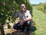 The sweet side of Central Texas' wine industry