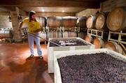 Spicewood owner Ron Yates stirs crushed grapes. Soon, juice from these grapes will be put into wooden barrels to age.