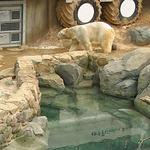 Maryland Zoo names new concessionaire