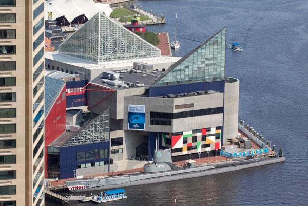 The National Aquarium in Baltimore would receive $5 million for a new exhibit under Gov. Martin O'Malley's proposed capital budget in 2014.