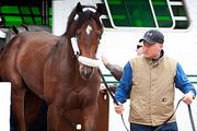 Preakness runner Astrology arrives at Pimlico on Wednesday.