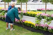 Workers put the final touches on flowers along the Corporate Village on the Pimlico infield.