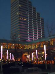 """In the forefront, purple lights line a walkway outside the Hilton Baltimore. In the background, a """"Go Ravens"""" sign inside the 250 W. Pratt St. office tower, which also shines purple."""