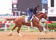 Kentucky Derby winner I'll Have Another will start the Preakness from the No. 9 post. The horse is at 2-1 odds to win the race.