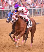 Pretension, trained by Chris Grove, will start the Preakness from the No. 3 post. The horse is at 30-1 odds to win the race.