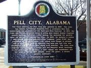 #22 - 35128 Cities/neighborhoods: Pell City Percentage of households earning $200,000 or more: 2.09% Number of households earning $200,000 or more: 96  Total households: 4,585