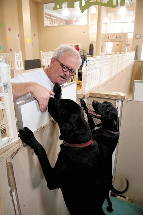 Dog Days owner Jimmy Johnson with some of the dogs in his downtown Birmingham kennel.