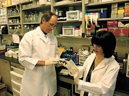 Art DeCarlo and Maria Belosouva examining a dense chitosan surgical membrane.