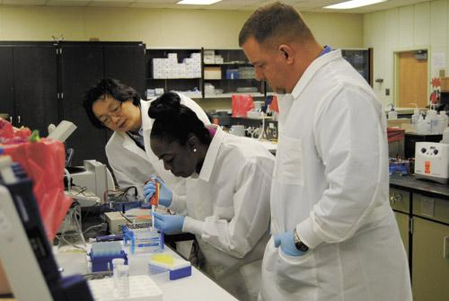 Dr. Jian Han of HudsonAlpha Institute for Biotechnology, left, working with UAB biotechnology students Pamela Briggs and Jeff Hicks to develop applications.