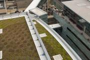 The hospital has several environmentally friendly features, including a green roof with Alabama native sedums.