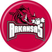 No. 10 University of Arkansas$24,325,173