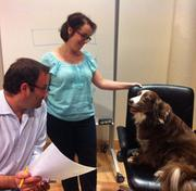 Digital Project Manager Lora Valante and Account Director AndrewClayton consult with Lora's canine friend, Clara, at Boston-based ad shopForge Worldwide.