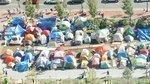 Greenway Conservancy to Menino: Evict Occupy Boston