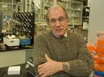 Stem cell scientists expecting more federal funding