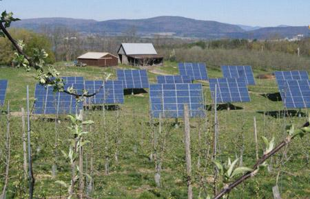 One of the two 60kW solar installations at Champlain Orchards in Shoreham, Vt.