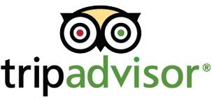 TripAdvisor on Tuesday said it's acquired New York's Wanderfly to boost the site's social travel planning capabilities.