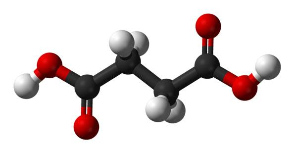 Myriant Corp. has a USDA loan to build a biomaterials plant in Louisiana, where it will make bio-succinic acid. Shown: A model of a succinic acid molecule.