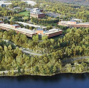 The Bay Colony office complex in Waltham has seen a flurry of a new leasing activity in recent months, part of a broader uptick in tenant expansions in Greater Boston's suburbs.