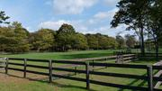 ... and a fenced facility for horses.