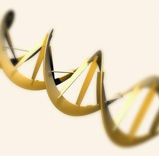 Complete Genomics, A DNA sequencing firm in California, is cleared by a federal agency to go ahead with its planned acquisition by a Chinese company.