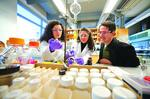 Federal cuts prompt more partnerships in biotech