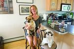 Dog days for Boston renters