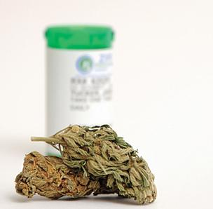 Marijuana buds and a prescription bottle
