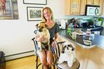 Landlords tighten leash on pet owners