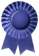 InfoTech Niagara hands out awards