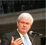 <strong>Gingrich</strong> pitches for votes in Buffalo