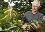 Slim pickings for WNY fruit growers