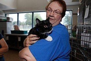 Volunteer Carol-Ann Sage, above, holds Pekoe, awaiting adoption at the SPCA Serving Erie County.