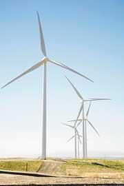 A wind energy expert with Shell Windservices told a Houston panel this week that each turbine costs about $4 million.