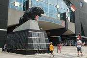Fans milled around Bank of America Stadium Saturday for the team's annual Fan Fest event.