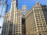 Moving out | No. 2: Illinois (Shown: Wrigley building in Chicago, Ill.)